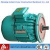 De hijstoestel Gebruikte Lopende Elektrische Motor van de Rotor Concial