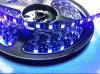 Tira flexible impermeable de 5050SMD LED con 3 años de garantía