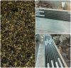 Partie supérieure du comptoir verte de cuisine de stratifié de granit d'Ubatuba