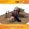 Amusement Park에 있는 옥외 Equipment Children Playground