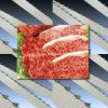 Bladen de van uitstekende kwaliteit van de Lintzaag van het Voedsel