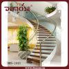 Escalera de cristal de acero de interior (DMS-2001)