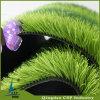 芝生のカーペット