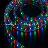 Indicatore luminoso di striscia flessibile di RGB SMD3528 220VAC LED di tensione