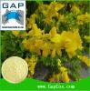Extracto natural de la planta del Genista de Genistein de la fuente del fabricante