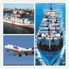 Serviços de transporte profissionais do oceano/ar a Austrália