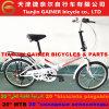 Gainer 20 die van Tianjin  de Vouwbare Fiets van de Fiets vouwt