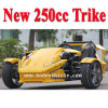 EEC Racing ATV 250cc de 3 policías motorizados