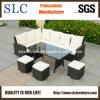 Mobilia del giardino, mobilia del giardino del rattan, giardino impostato (SC-A7621)