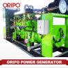 générateur diesel silencieux de 200kVA Oripo avec l'engine de Shangchai