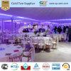 Grote de Partij van het diner Verscheidene Tenten van de Pagode (zd-1010)