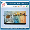 Smart Card del contatto con Sle4442 Chip