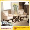 Présidence moderne de loisirs de sofa de salon avec l'accoudoir