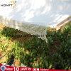 Hammock del giardino del cotone con merletto