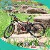 vélo électrique à moteur de pivot de 36V 250W avec la suspension
