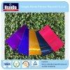 Wholesales populäres Farben-Spray-Puder-Beschichtung-Puder der Süßigkeit-2016