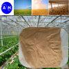 Аминокислота 8-0-0 Chlorion чисто Vegetable аминокислота источника низкое