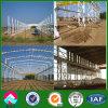 조립식 가벼운 강철 프레임 작업장 건물 (XGZ-SSB126)