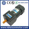 Singolo CA Induction Gear Motor di Phase 60W