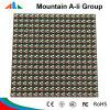 Modulo della visualizzazione di LED di RGB dei moduli di P10 LED
