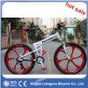 مصنع يبيع [متب] درّاجة [بريس/] جبل درّاجة لأنّ عمليّة بيع/ثلج درّاجة