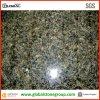 Qualité Uba Tuba Granite pour Wall/Flooring Tiles