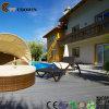 Decking do jardim de China WPC da alta qualidade em Qingdao