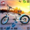 elektrisches faltendes Fahrrad des fetten Gummireifen-250W