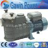 Pompe centrifuge de filtre de série de Fcp pour la piscine de nettoyage