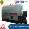 Chaudière à chaînes horizontale de charbon de la Chine de tube d'incendie de grille