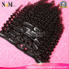 Virgin brasiliano Human Hair Afro Kinky Curly Clip in Hair Extensions