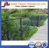 PVC Coated Galvanized Chain Link Fence per Baseball Field