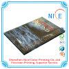 Stampa degli scomparti mensili di colore completo della stampante del libro della stampa del calendario di Shenzhen