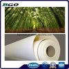 Impression numérique Matériau publicitaire en toile de polyester (18 X24 3,8 cm)