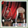 Конструкция резвится трофей золота пустой кристаллический (JD-CT-406)