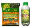 Pré atrazine 80% wp, numéro 1912-24-9 d'herbicide d'apparition de CAS