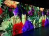 Affitto esterno del commercio all'ingrosso della visualizzazione P4.81 di colore completo di prezzi LED di SMD