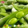 Haricots de soja d'IQF