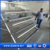 Gutes Quality Chicken Cage in Anping