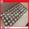 30.1625m m Chrome Steel Balls para Sealing