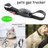 La nuova posizione in tempo reale del programma 2016 Pets l'inseguitore di GPS (EV-200)
