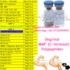 Muscle Growth를 위한 주사 가능한 2mg Per Vial Peptides Mgf