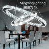 Pendente inoxidável Lights do diodo emissor de luz de Steel com CE & UL (810202)