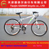 Tianjin Gainer 26  MTB/Mountain Bicycle Aluminum 21s