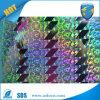 De Zelfklevende Sticker van het hologram/de Aangepaste 3D Sticker van de Douane van het Hologram Sticker/Cheap