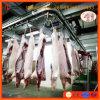 저온 저장 장비 중국 공급자와 가진 도살장 기계 돼지 도살 선을 완료하십시오