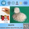 Gelatina bovina del hueso granular para la carne congelada