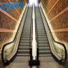 Escalator bon marché de maison de bonne qualité d'escalator de balustrade des prix d'usine