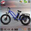 3つの車輪の電気スクーター旅行浜の三輪車