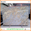 Kitchen Countertopか島TopsのためのトラSkin Granite Slabs